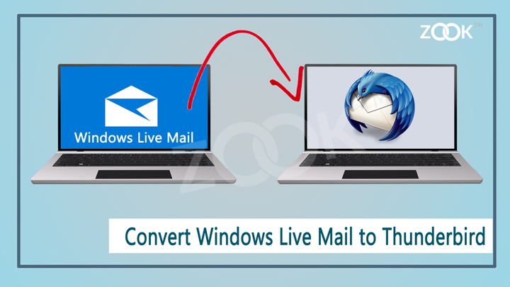 Migrate Email From Windows Live Mail To Thunderbird ••▷ SFB